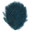 Feather Pad Guinea 8-10cm Turquoise